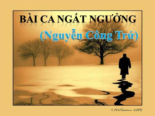 Quan niệm nhân sinh qua bài bài ca ngất ngưởng của Nguyễn Công Trứ